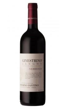 Langhe Nebbiolo Ginestrino - Conterno Fantino